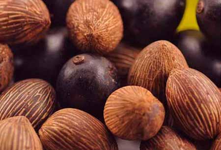 Cupuazú-El-famoso-cacao-de-Brasil