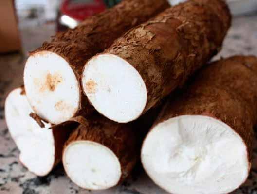 La-yuca-alimento-brasileño